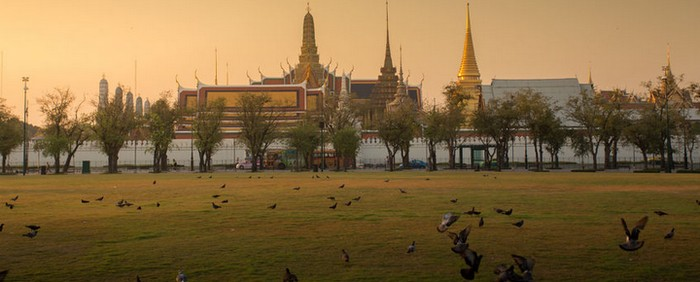 TRANSPORT ANIMAUX THAILANDE